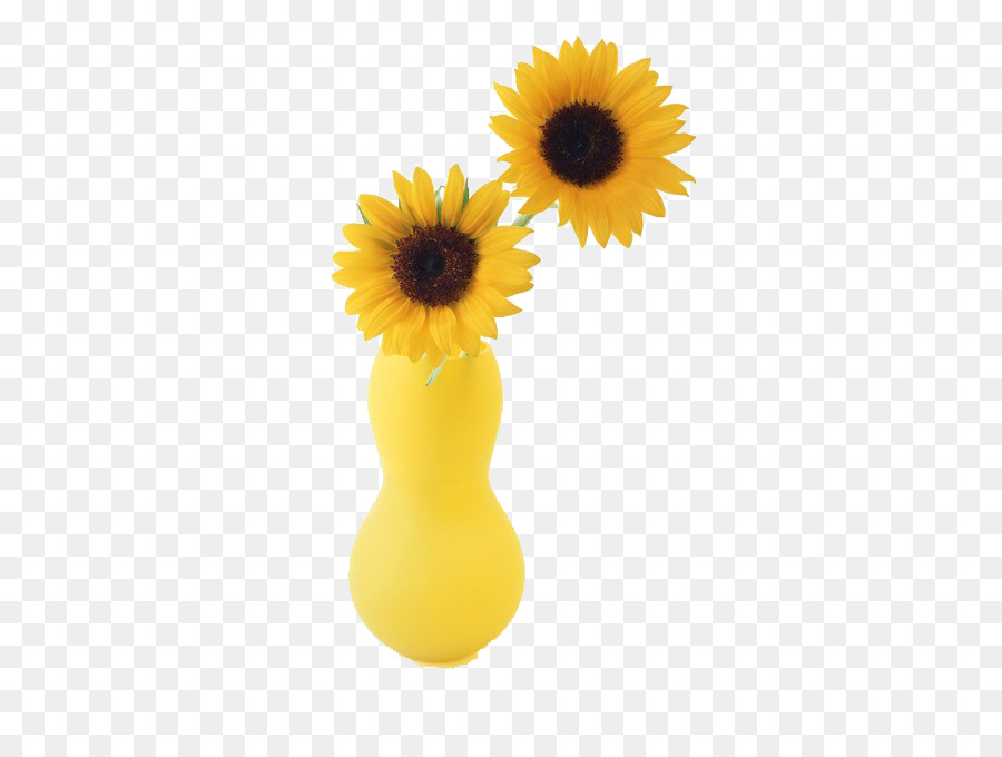 Two Cut Sunflowers Common Sunflower Vase Yellow Vase Png Download