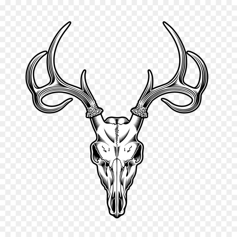 Deer Skull Drawing Illustration Sheep Tattoo Png Download 1181