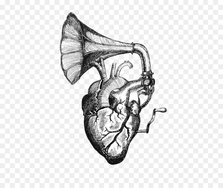 Heart sounds Drawing Tattoo Anatomy - Heart Speaker png download ...