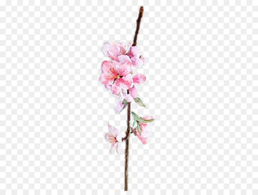 Suluboya çiçek Boyama Suluboya çiçek Tasarım şeftali Sulu Boya