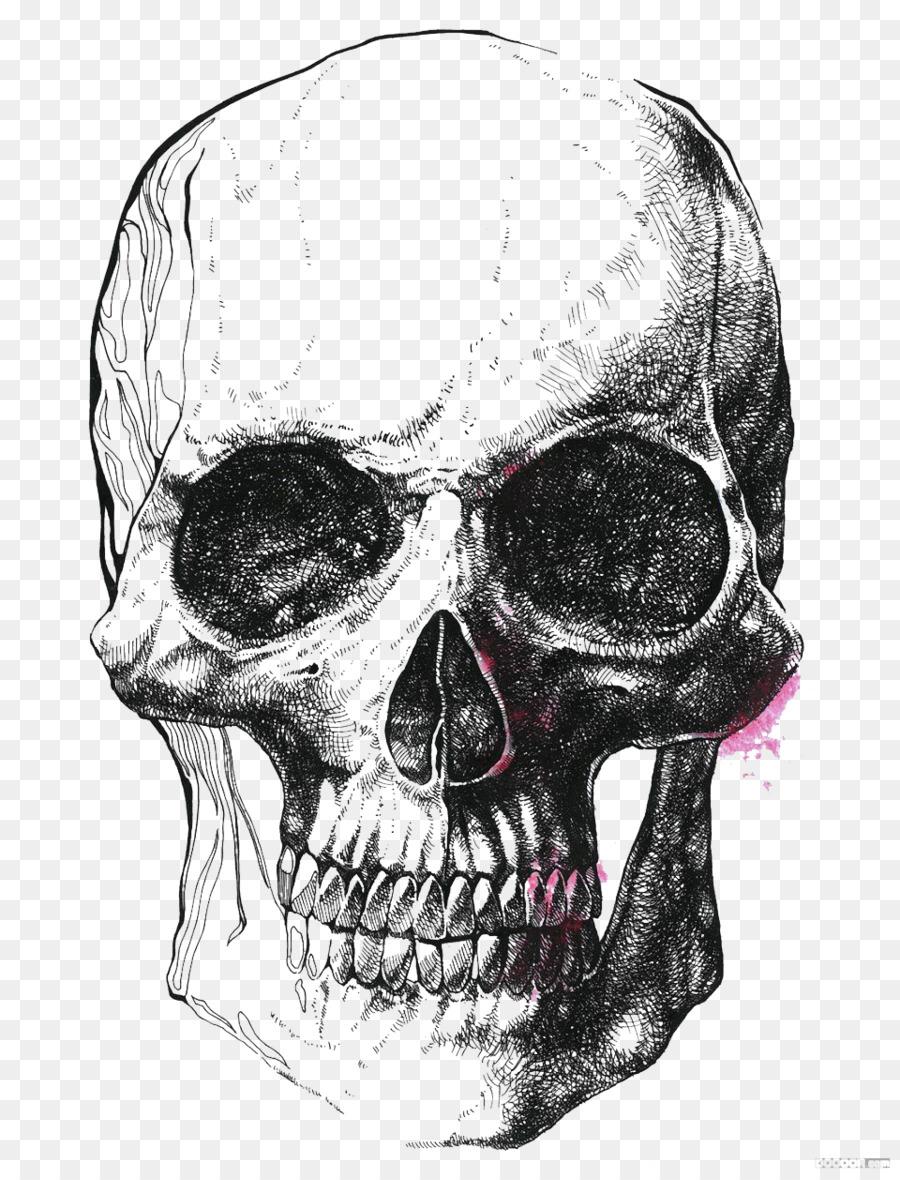 Human Skull Symbolism Drawing Skeleton Illustration Simple Black
