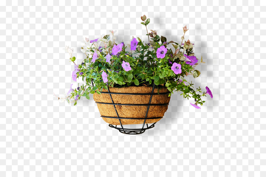 Flowerpot Computer file - Full of small purple flower pot png download - 591*591 - Free Transparent Flower png Download.