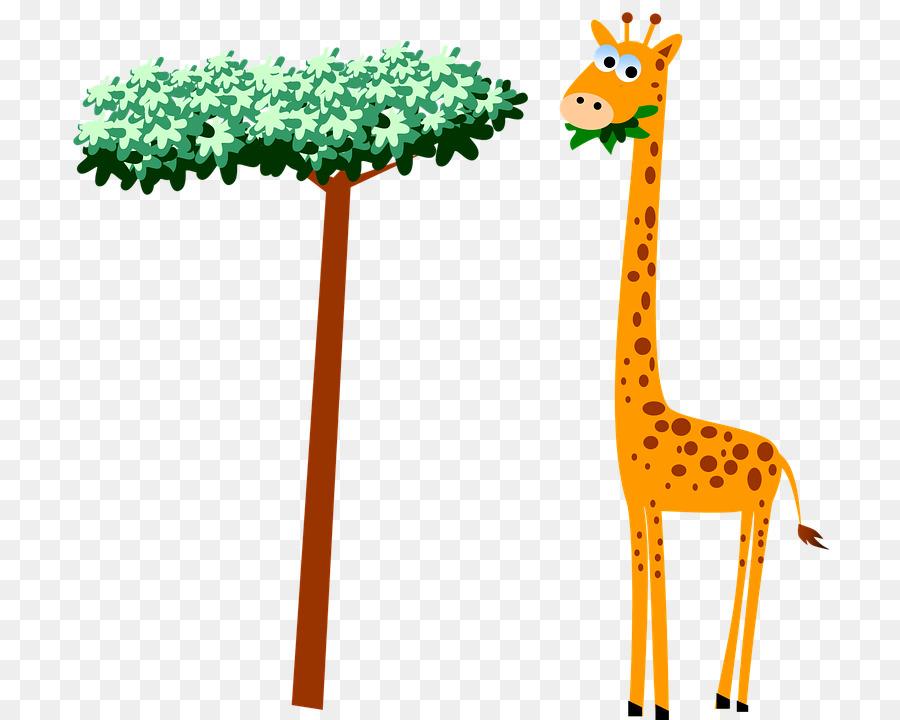 Baby Giraffes Cartoon Clip art - Cartoon giraffe eating ... (900 x 720 Pixel)