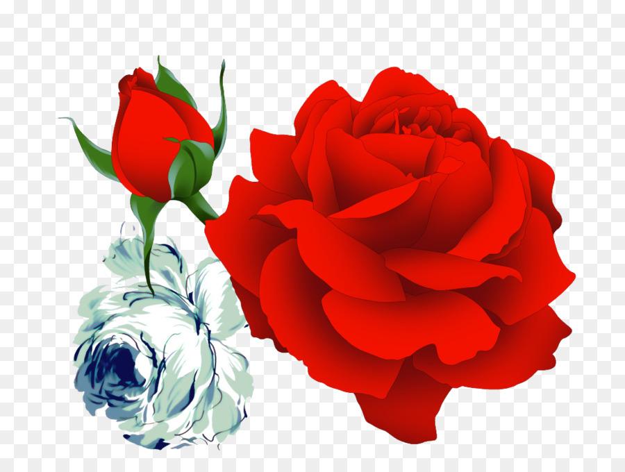 garden roses beach rose flower wallpaper rose png download 1024