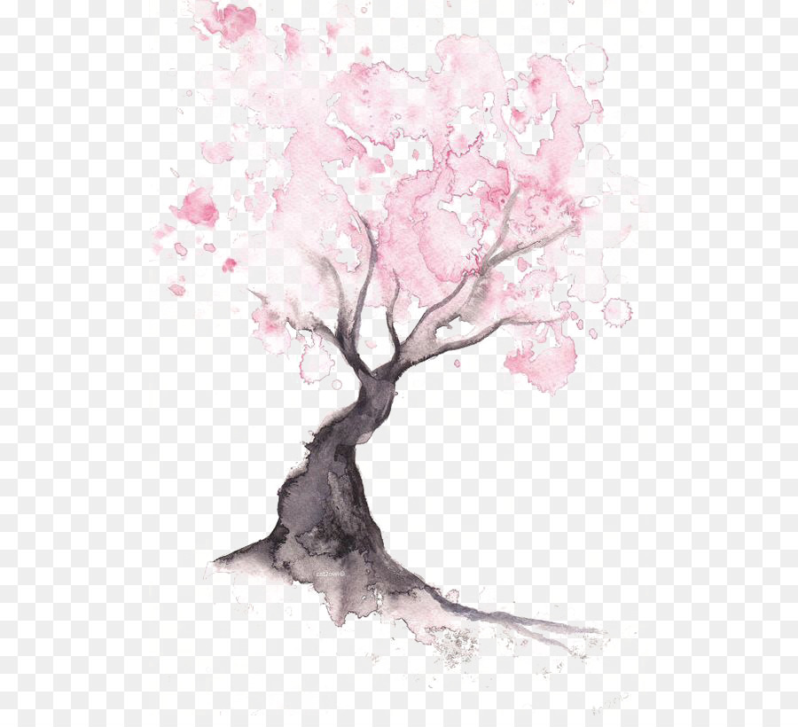 Paper Cherry Blossom Watercolor Painting Drawing Cherry