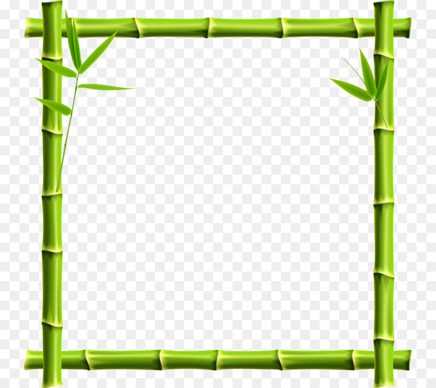 Giant Panda Picture Frame Bamboo Clip Art Bamboo Border Png