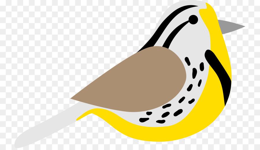 Bird Line Drawing Png Download 800513 Free Transparent