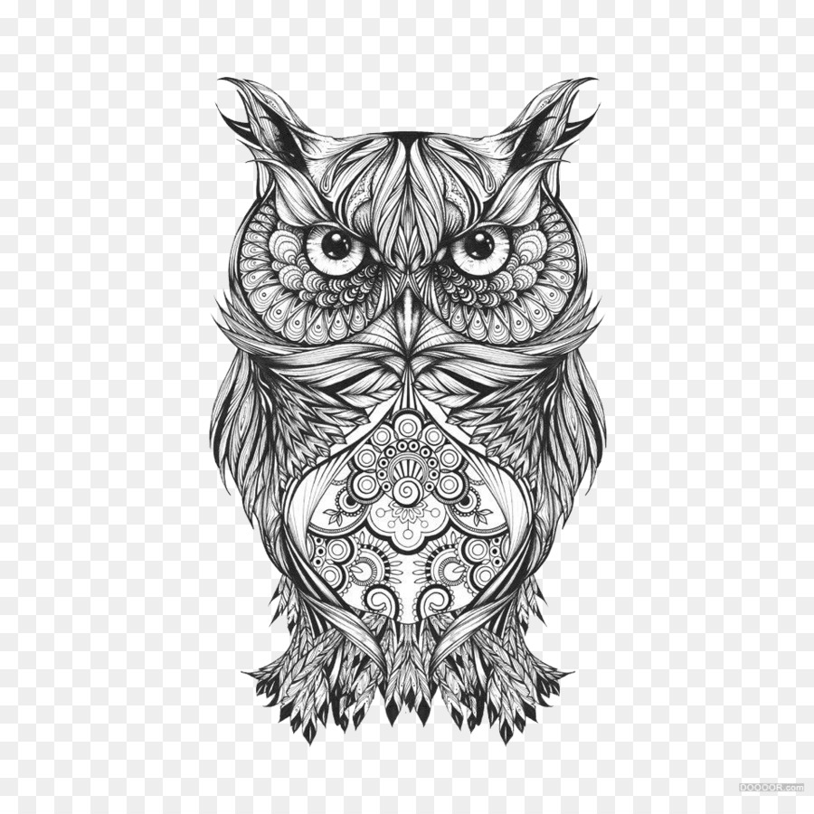 owl visual arts drawing sketch black and white national
