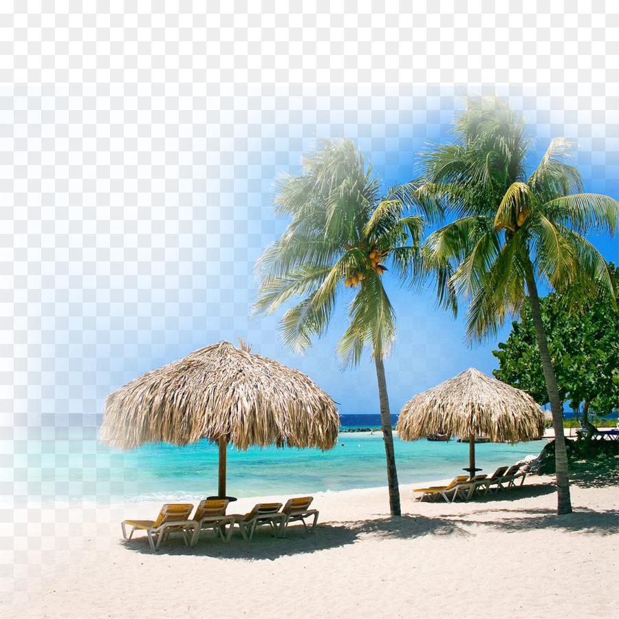 klein curaxe7ao coral estate centre playa portomari beach - beach