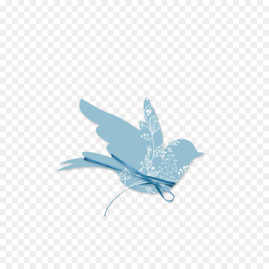El ave rock paloma azul bautismo perister objetivo - Aves Formatos ...