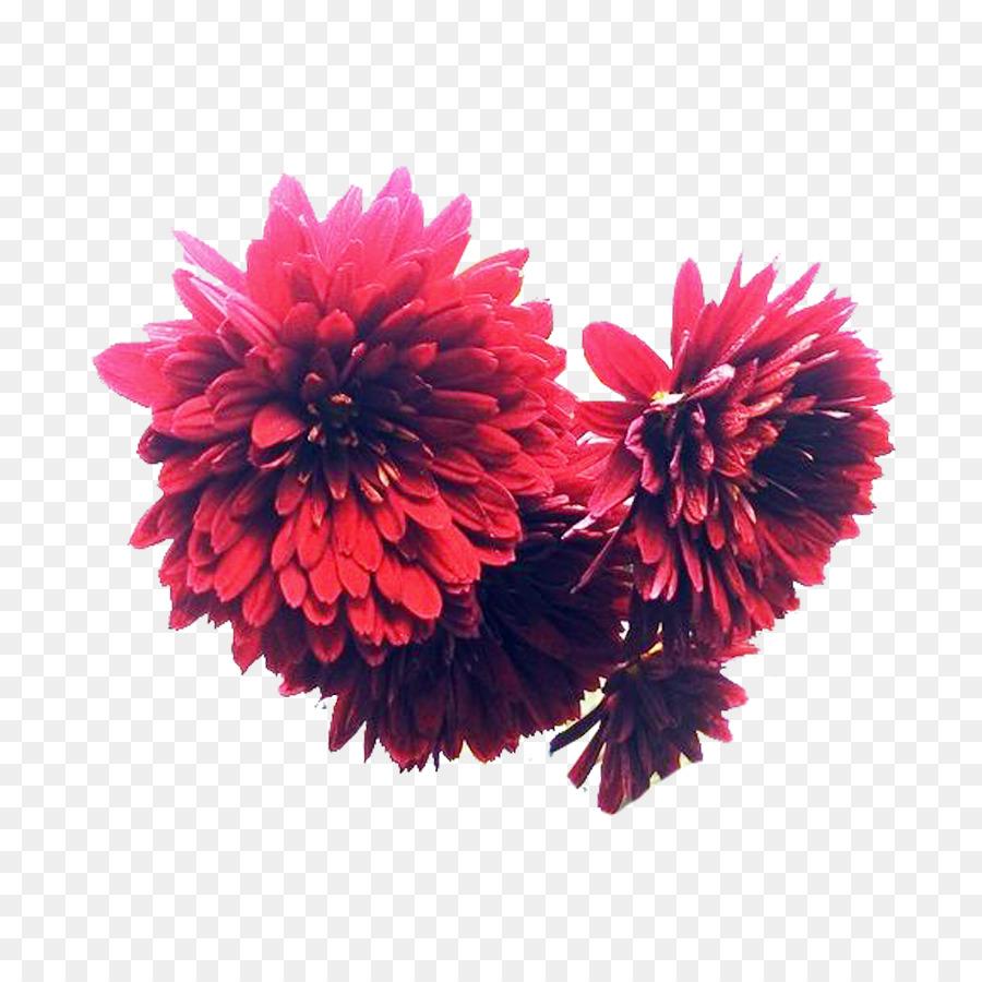 Chrysanthemum Inkstick Flower Bouquet Designer A Picture Of Ink