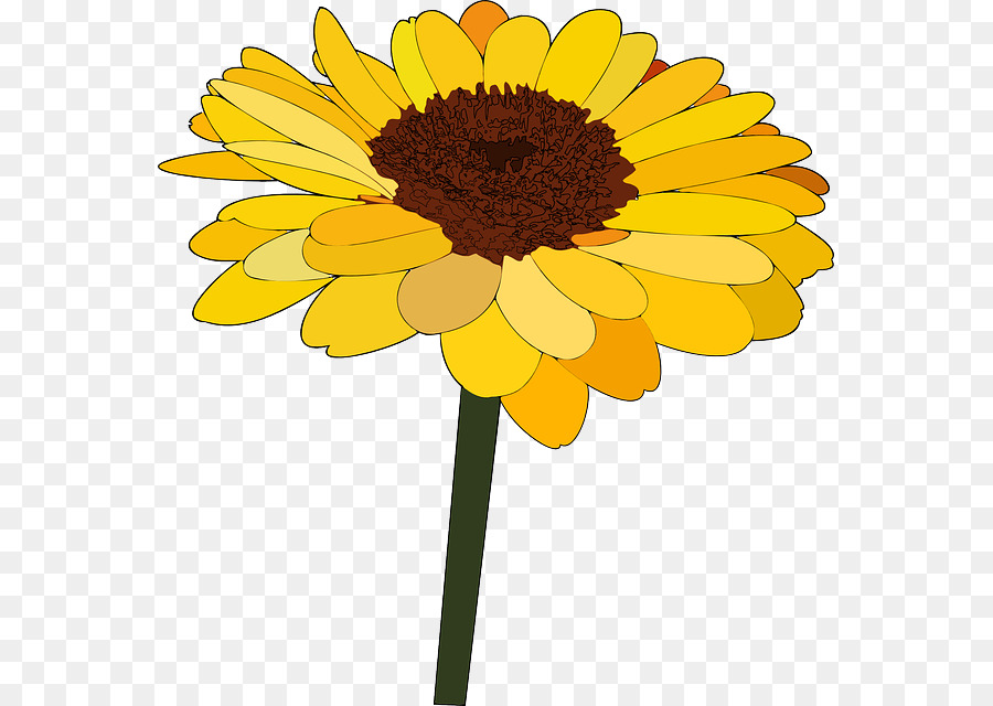 common sunflower cartoon drawing clip art blooming sunflowers png rh kisspng com sunflower cartoon png sunflower cartoon wallpaper