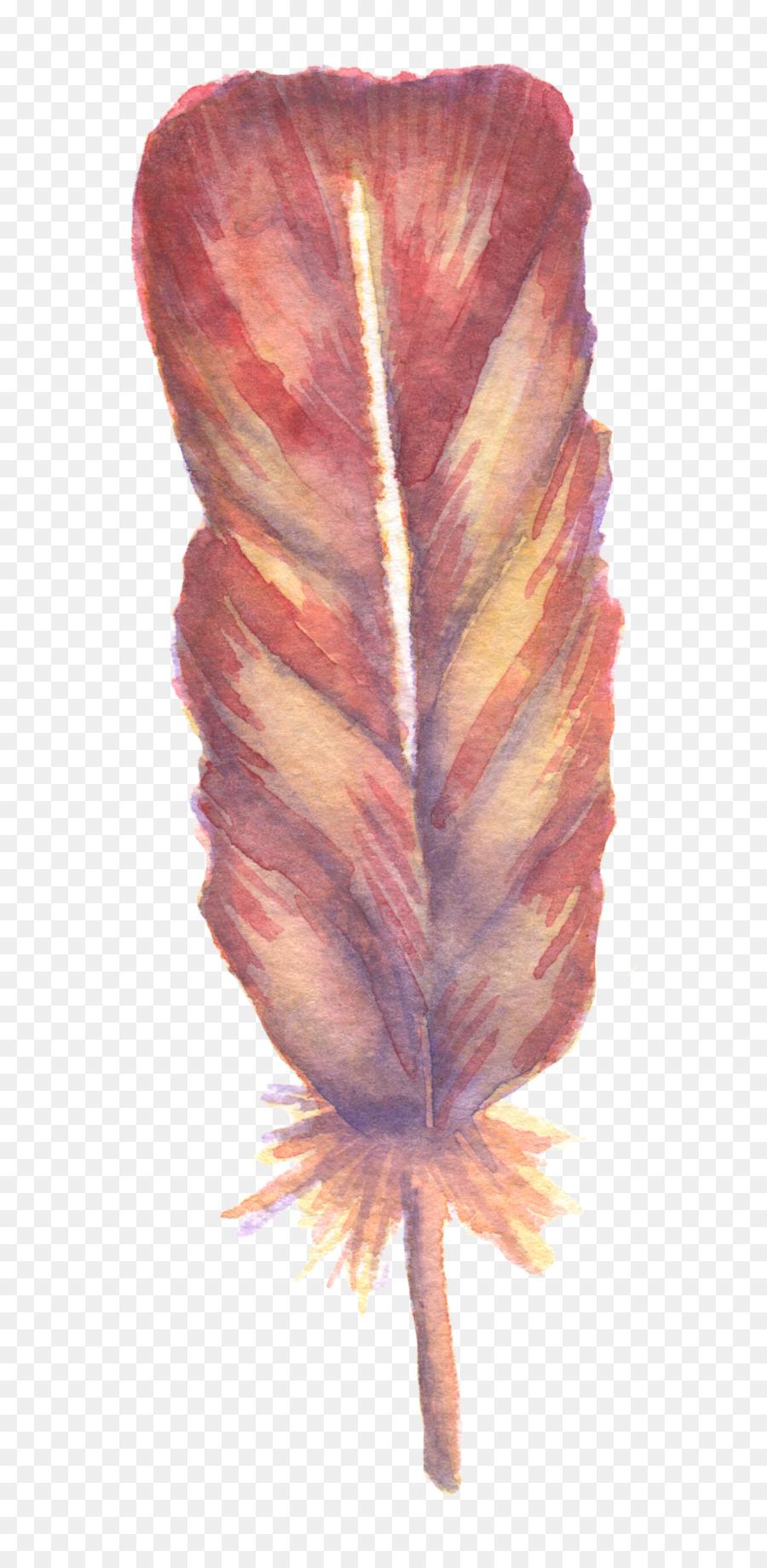çiçek Tüy Boyama Suluboya Suluboya Süper Güzel Ve Yeni Bir Sen
