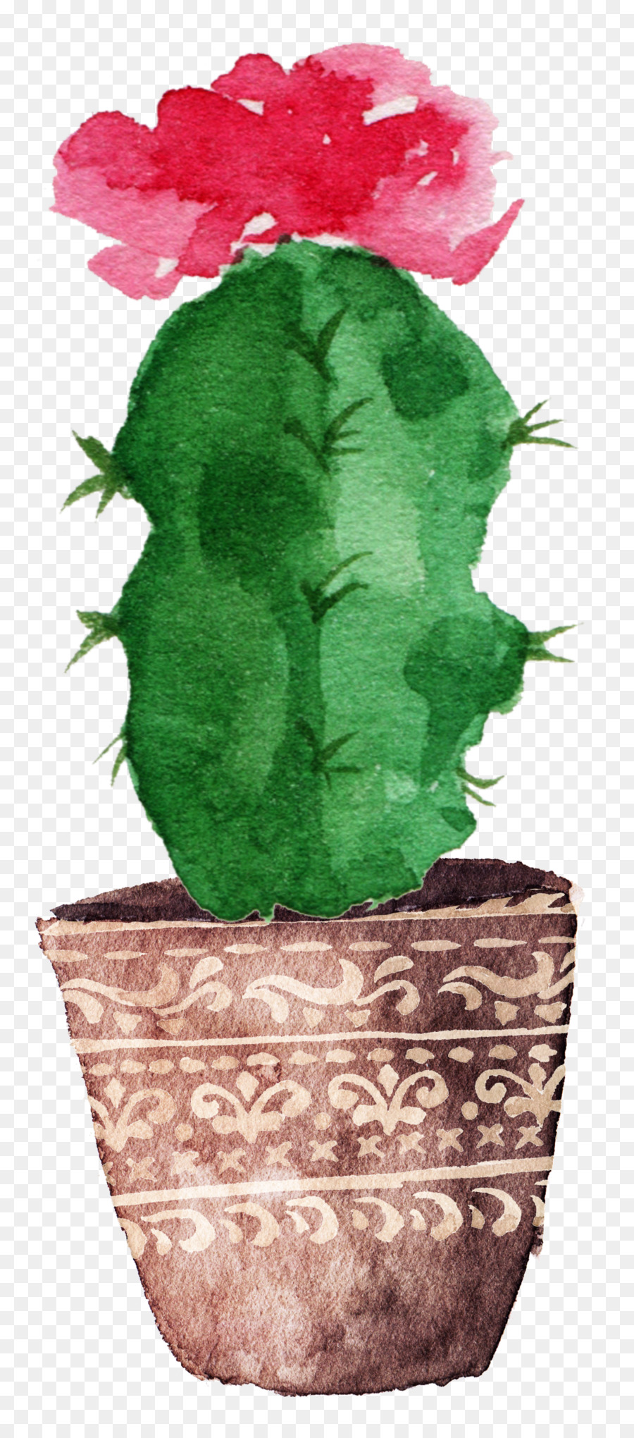 Cactaceae watercolor painting drawing canvas prickly pear cactus bloom png download 11492602 free transparent cactaceae png download