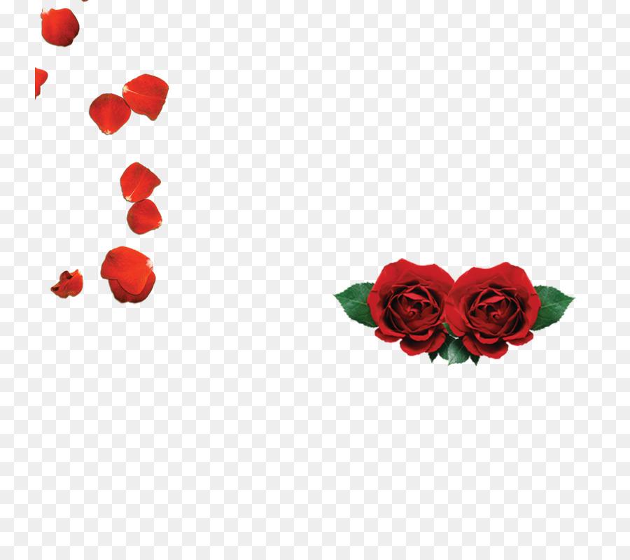 Le Rose Da Giardino Spiaggia Di Petali Di Rose Rosse Rosa