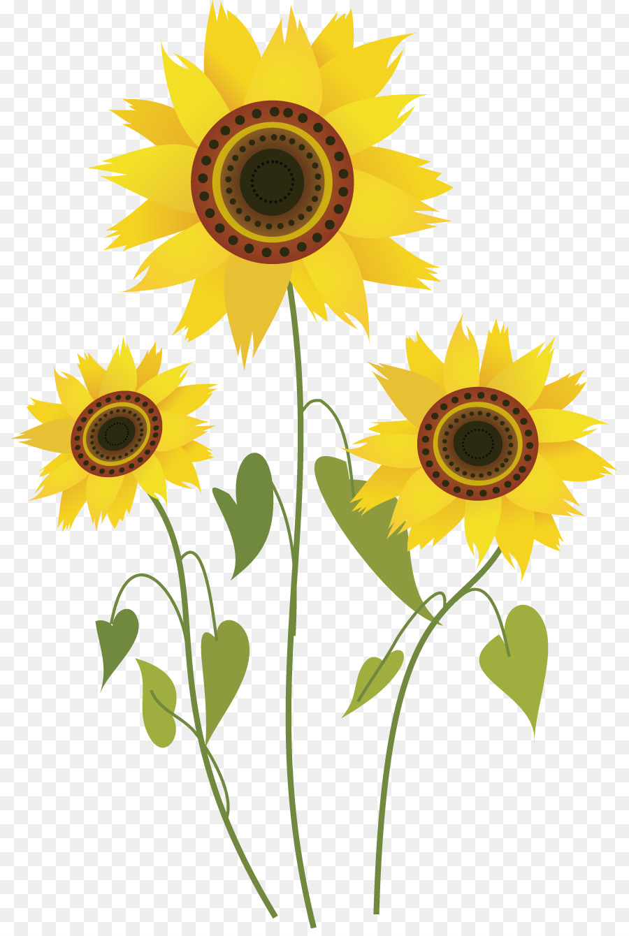 common sunflower drawing computer file cartoon sunflower