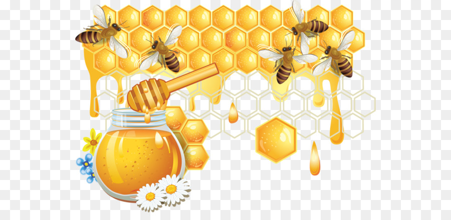 honey bee honeycomb - bees and honey png download - 600 425