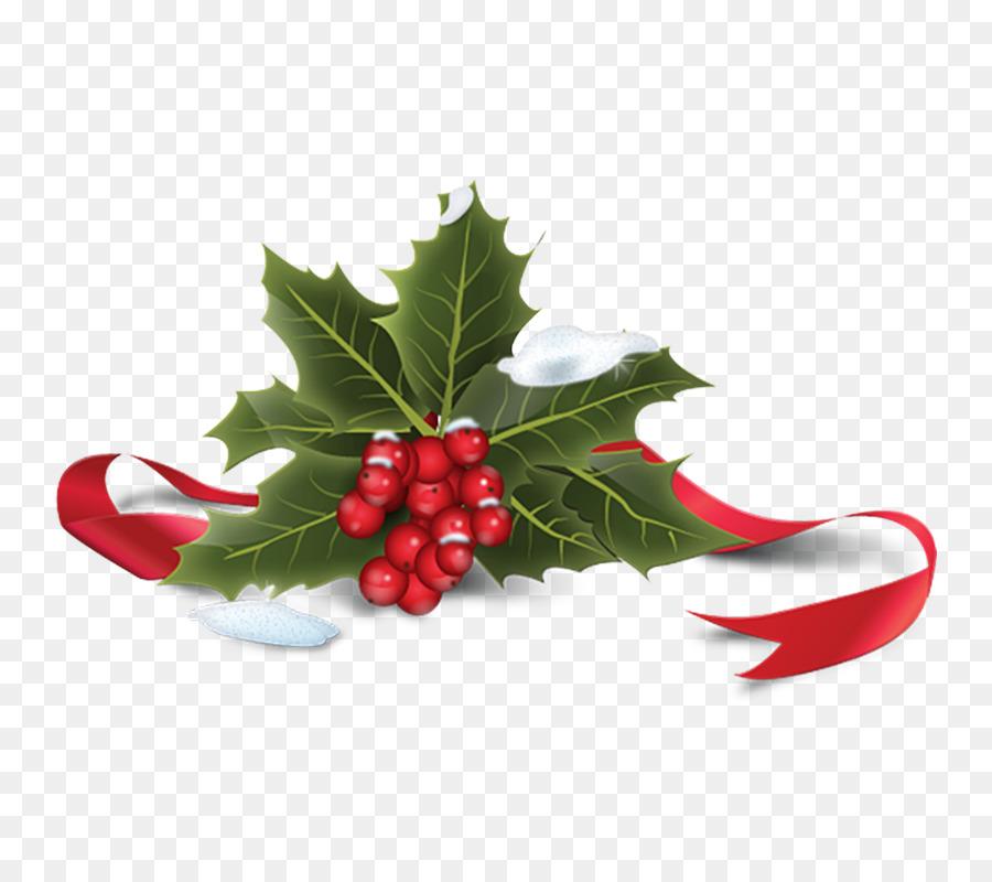 Comune Di Agrifoglio Di Natale Icona Creativo Di Natale Scaricare