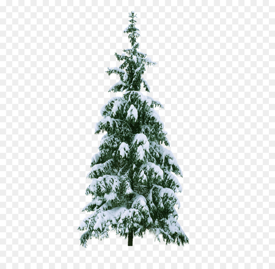 New Year Tree Christmas Snow Clip Art