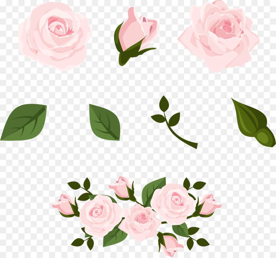 Beach rose euclidean vector pink pale pink rose flower png beach rose euclidean vector pink pale pink rose flower mightylinksfo