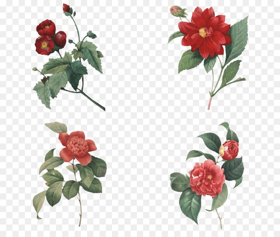 Paper Wedding invitation Japanese camellia Postcard Greeting card ...
