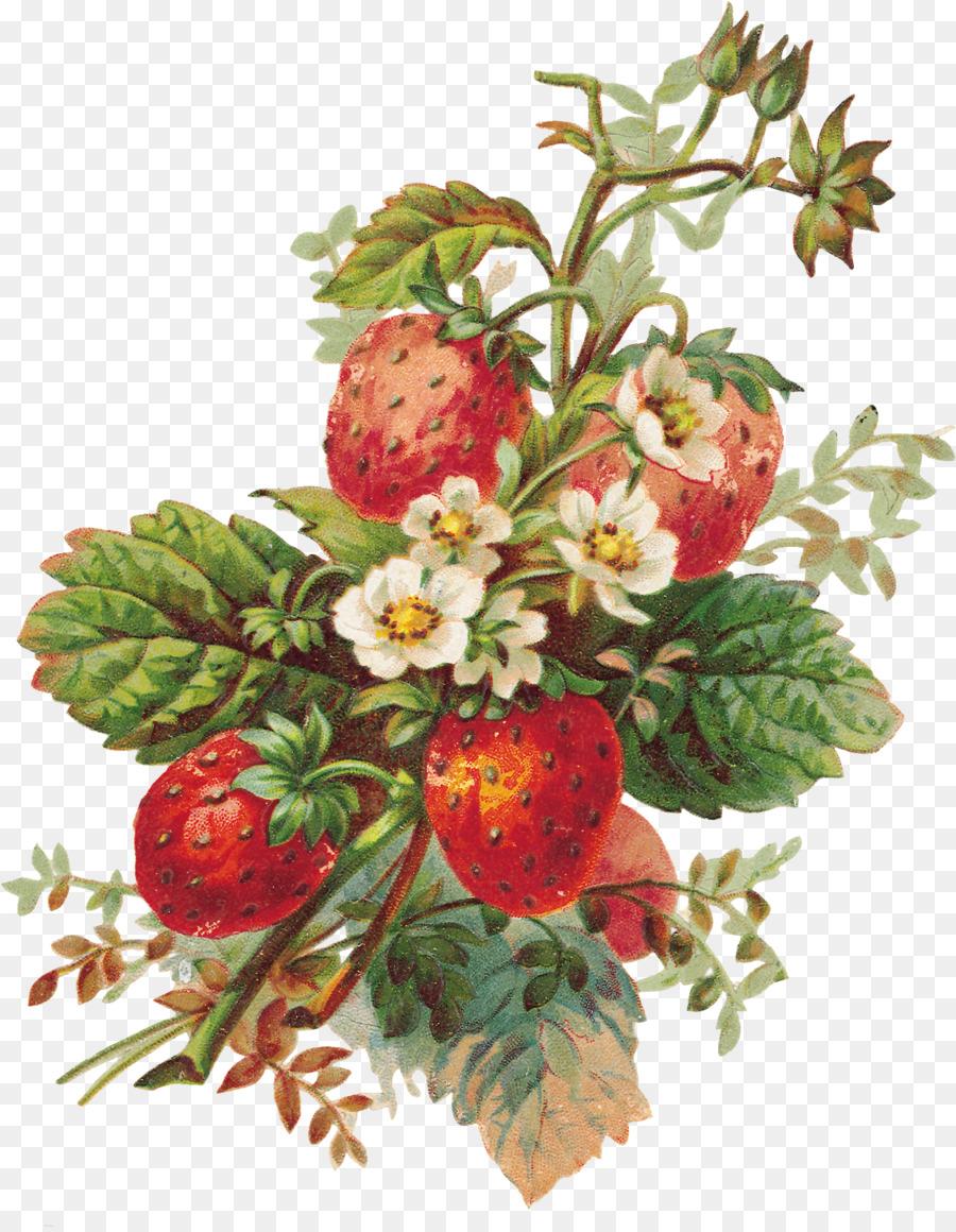 Milkshake Strawberry Pie Full Color Fruits And Flowers Illustrations