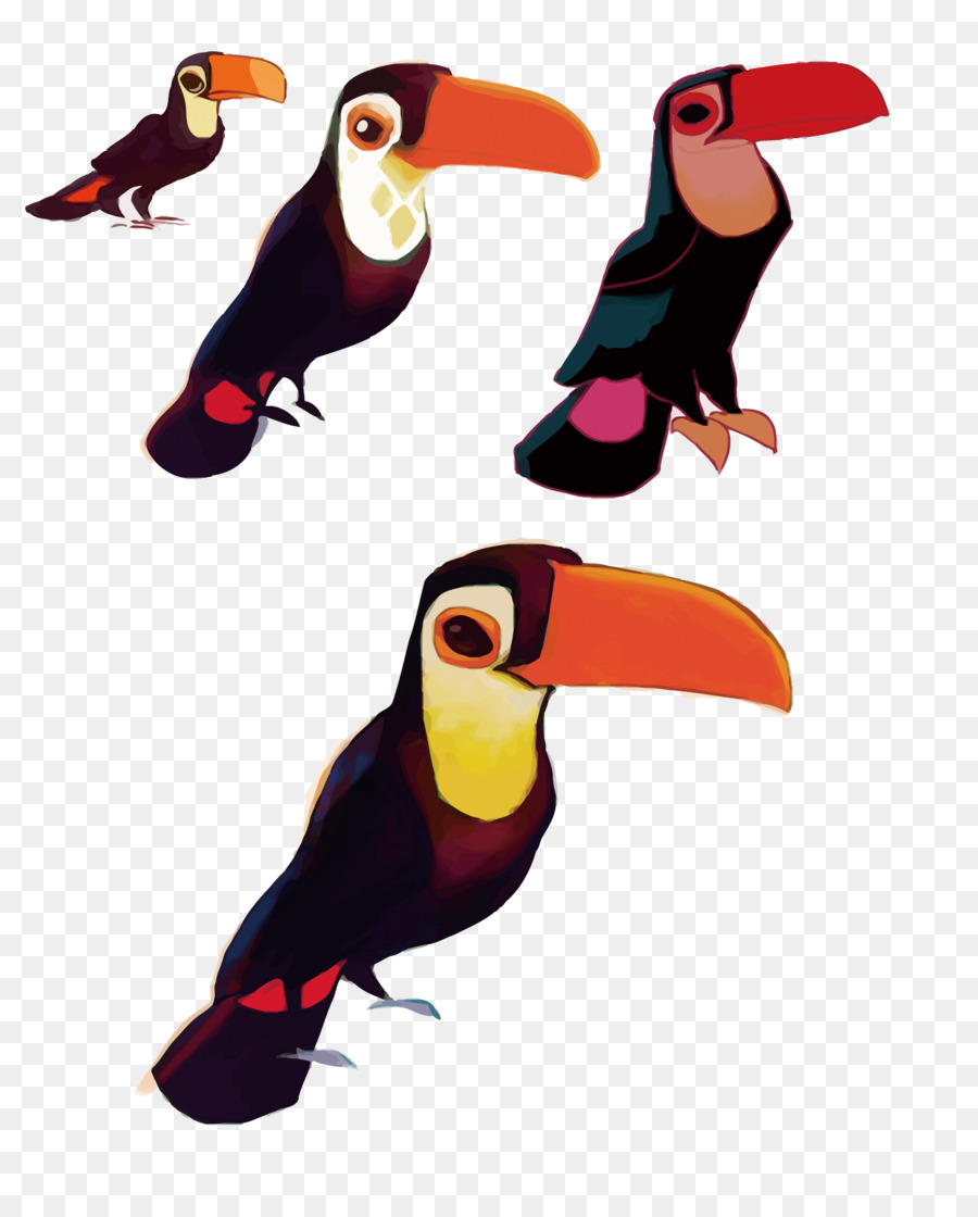 Toucan Download Vector Big Bird Png Download 15001844 Free