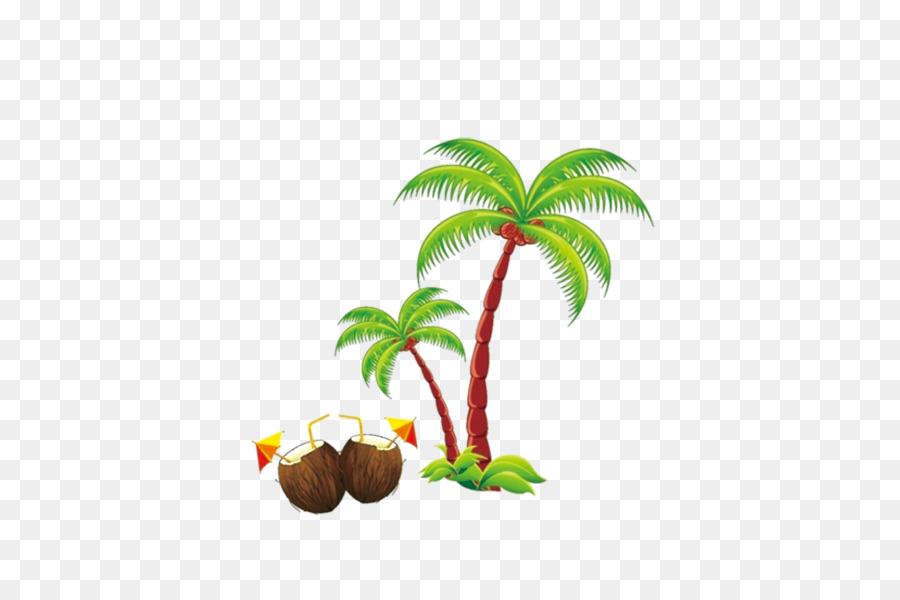 Beach coconut. Tree cartoon png download