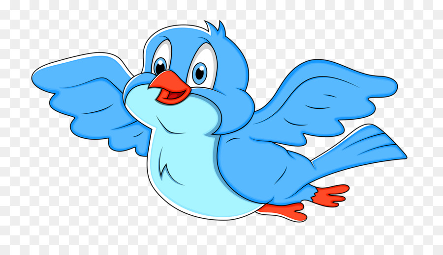Bird Flightless Bird png download - 800*516 - Free Transparent Bird