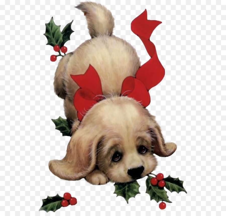 Puppy Santa Claus Dog Christmas card - dog png download - 593*848 ...