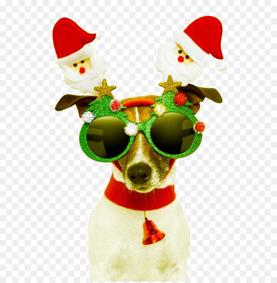 Santa Claus Dog Christmas Card Greeting Card Christmas Dog Design