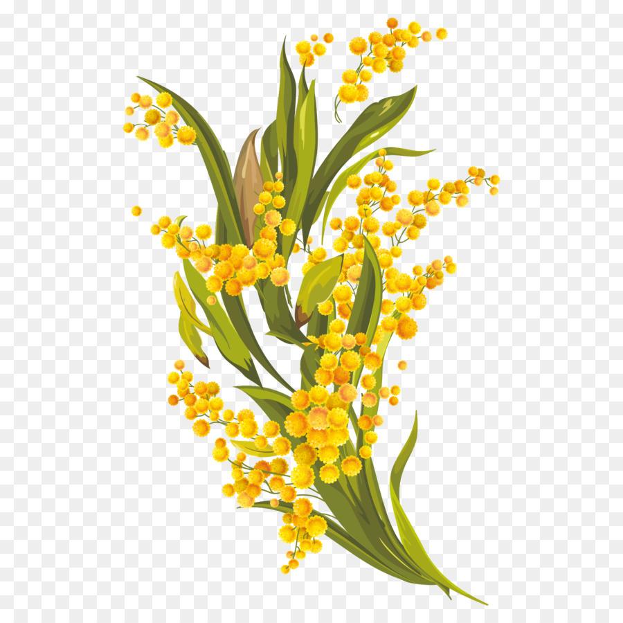 Floral design common daisy euclidean vector yellow daisy vector floral design common daisy euclidean vector yellow daisy vector elements izmirmasajfo