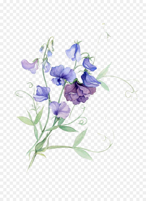 Paper Sweet Pea Watercolor Painting Flower Purple Pea Flowers
