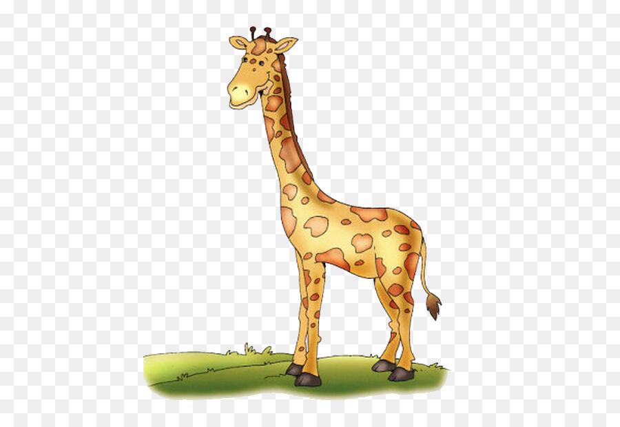 El norte de la jirafa la jirafa Reticulada Color de Dibujo - Linda ...