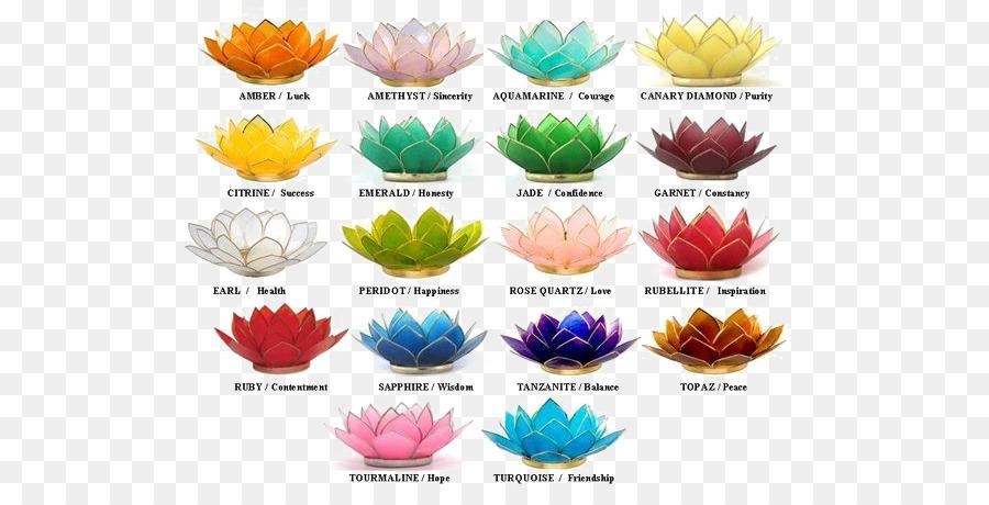 Nelumbo Nucifera Color Symbolism Flower Plant Symbolism Lotus Png