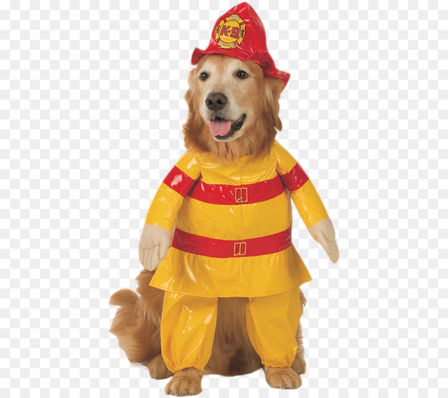 dog cat halloween costume pet dog