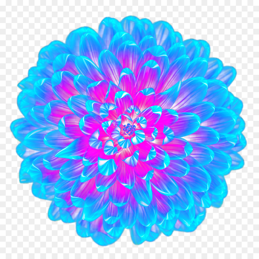 Light Blue Flower Cool Blue Flower Top View Png Download 900900