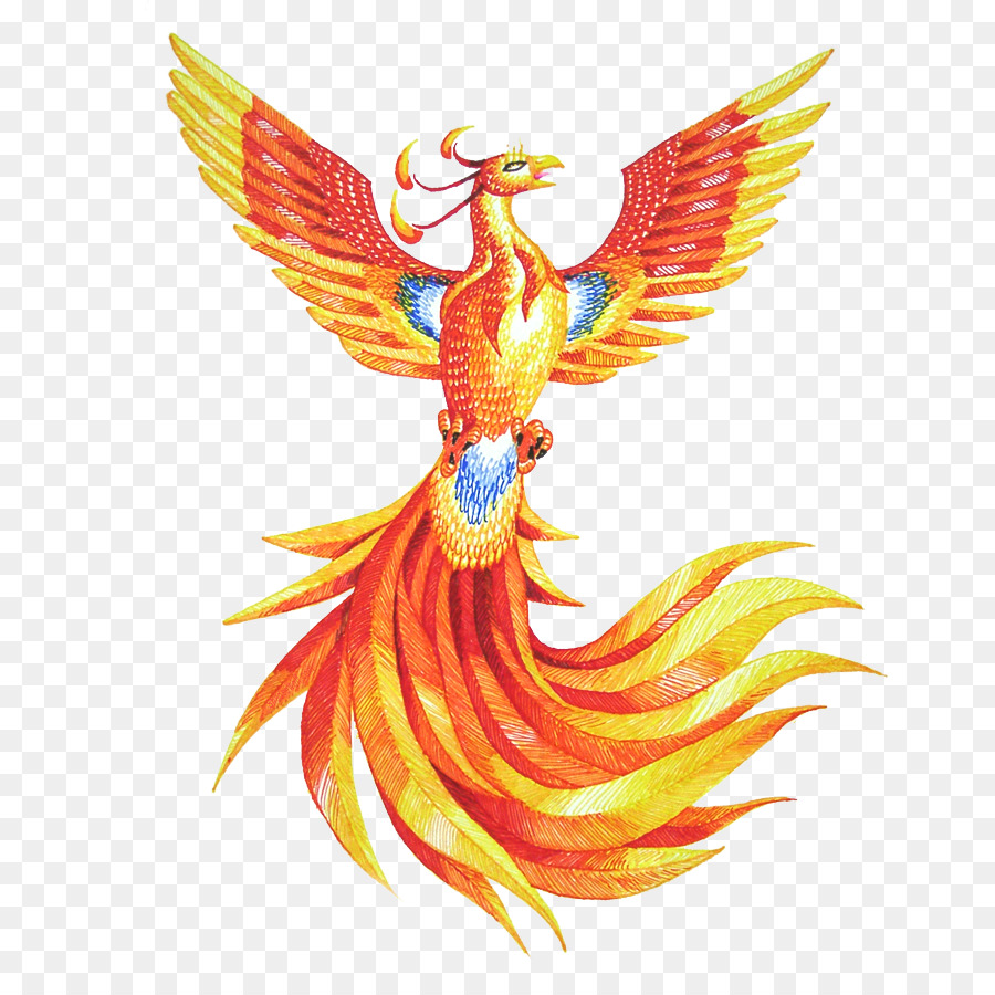 how to draw a phoenix with colors