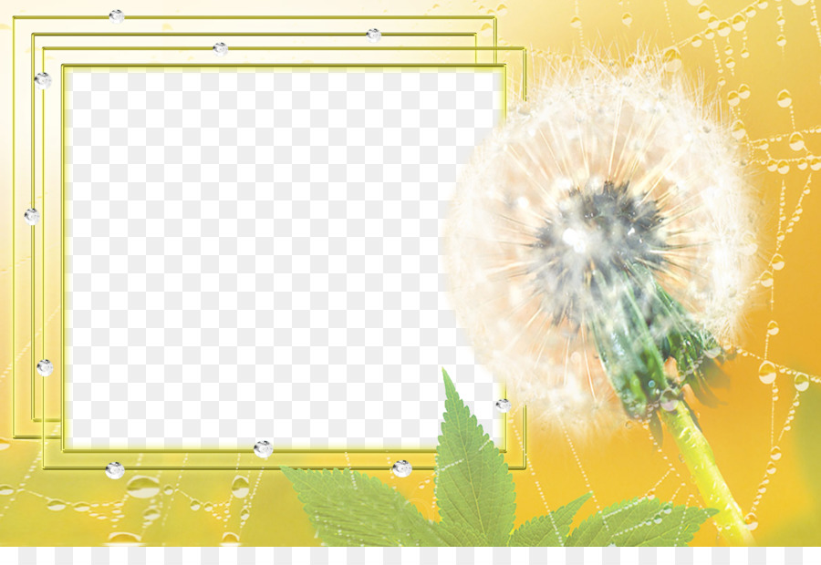 Drawing Picture Frame Software Dandelion Frame Border Png Download