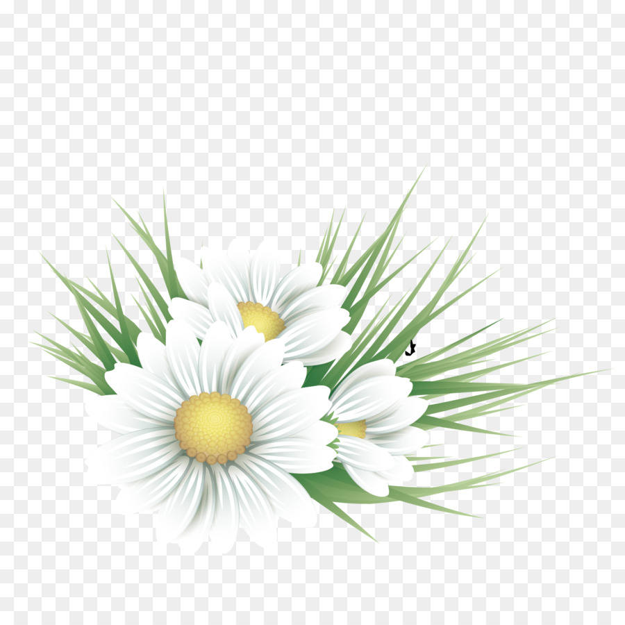 Common Daisy Floral Design Flower Illustration Vector White Floral