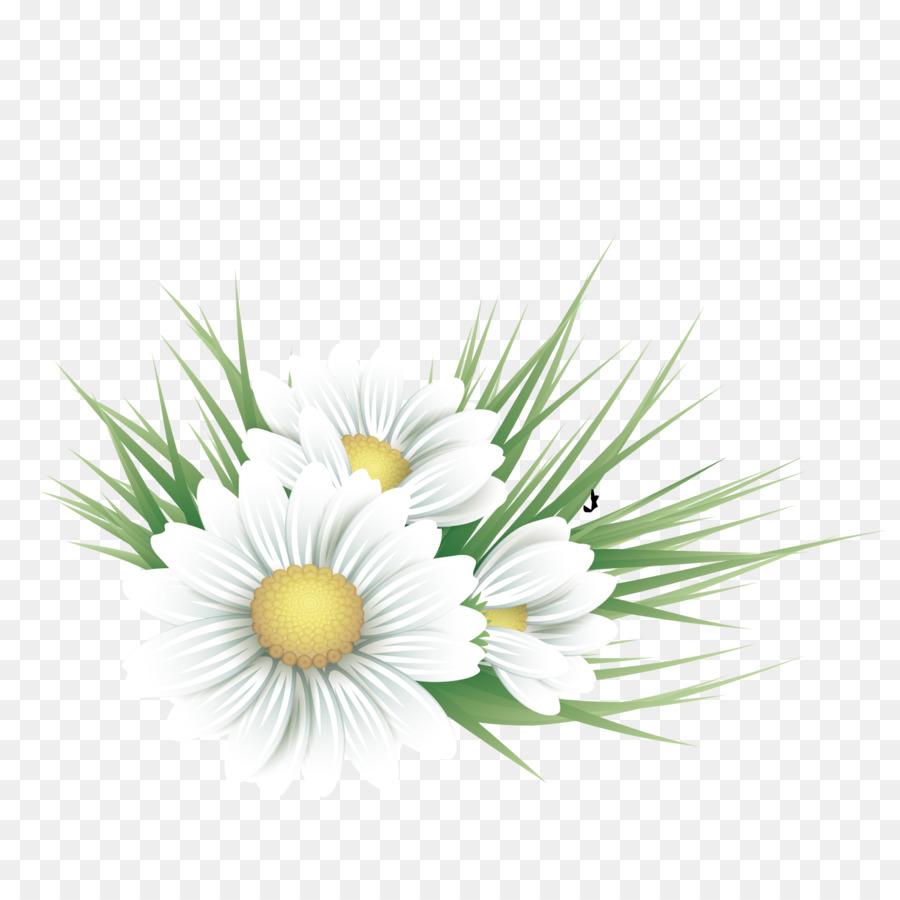 Common daisy floral design flower illustration vector white floral common daisy floral design flower illustration vector white floral decoration izmirmasajfo