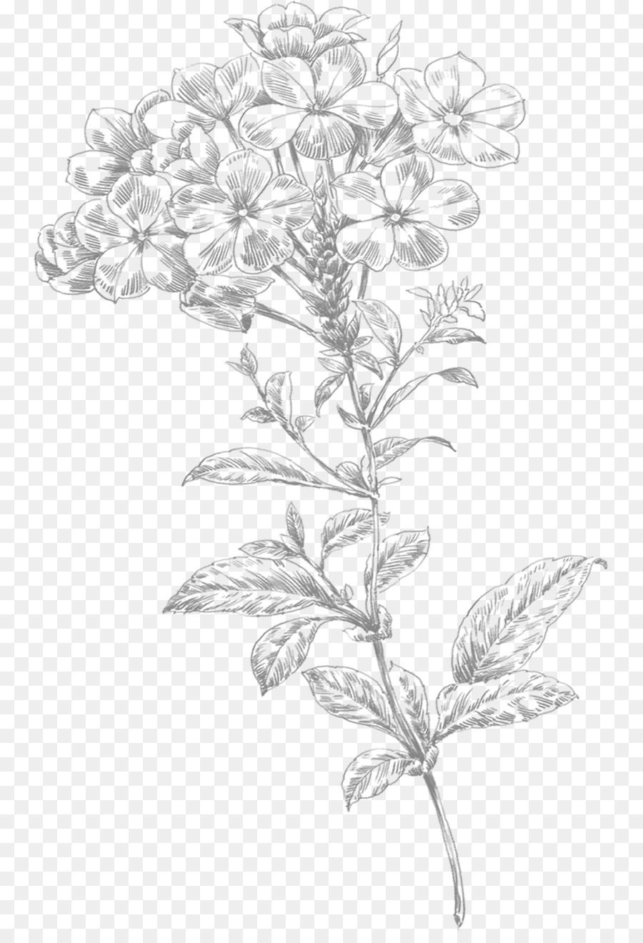 Small Flowers Line Drawing : Línea de arte la flor dibujo