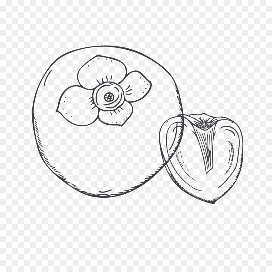 Persimmon Sketch Persimmon Png Download 13461329 Free