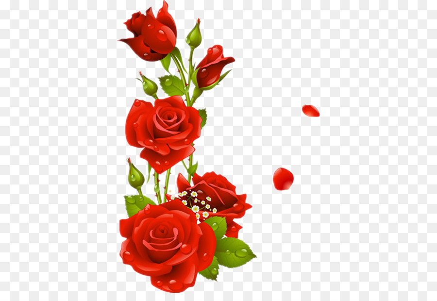 Bordi E Cornici Floreali Di Rose Cornice Clip Art Rose Rosse