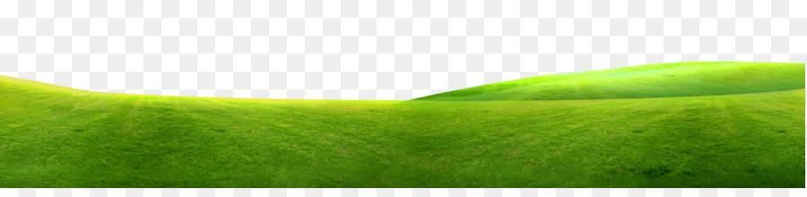 Tennis Ball Energy Wallpaper Green Grass Border Texture 3010 704