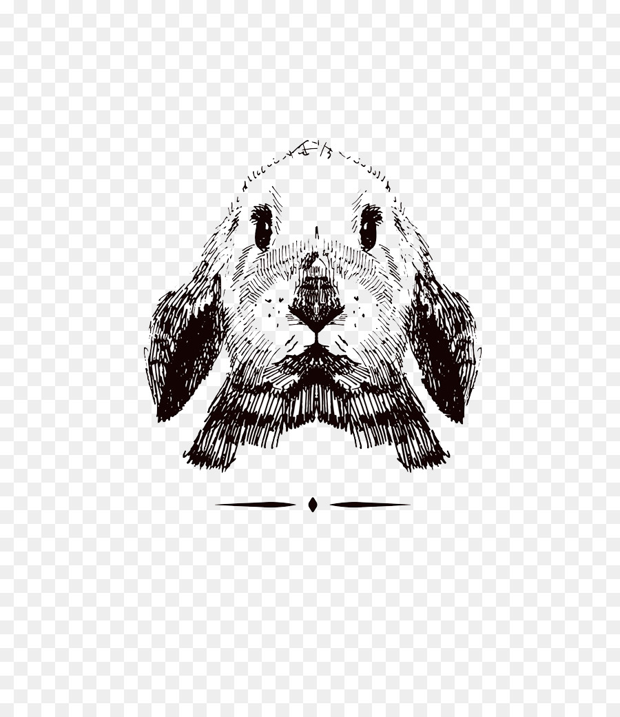 Dalmatian Anjing Gambar Sketsa Kelinci Unduh Monokrom Non
