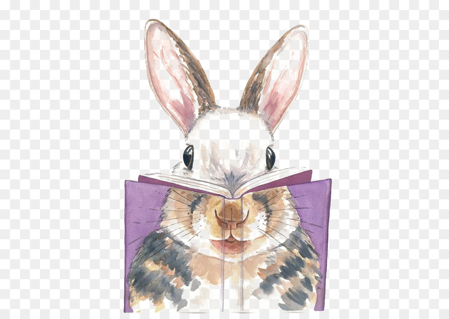 Boyama Tavşan Sanatçı Suluboya Tavşan Okuma Png Indir 500636