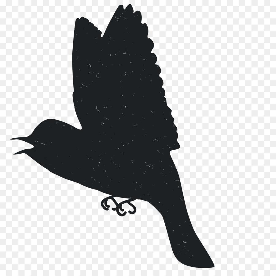 Silhouette Di Animali In Bianco E Nero Sagome Di Animali Scaricare