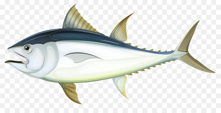 Tuna Fish Anatomy Illustration Creative Gray Fish Png Download
