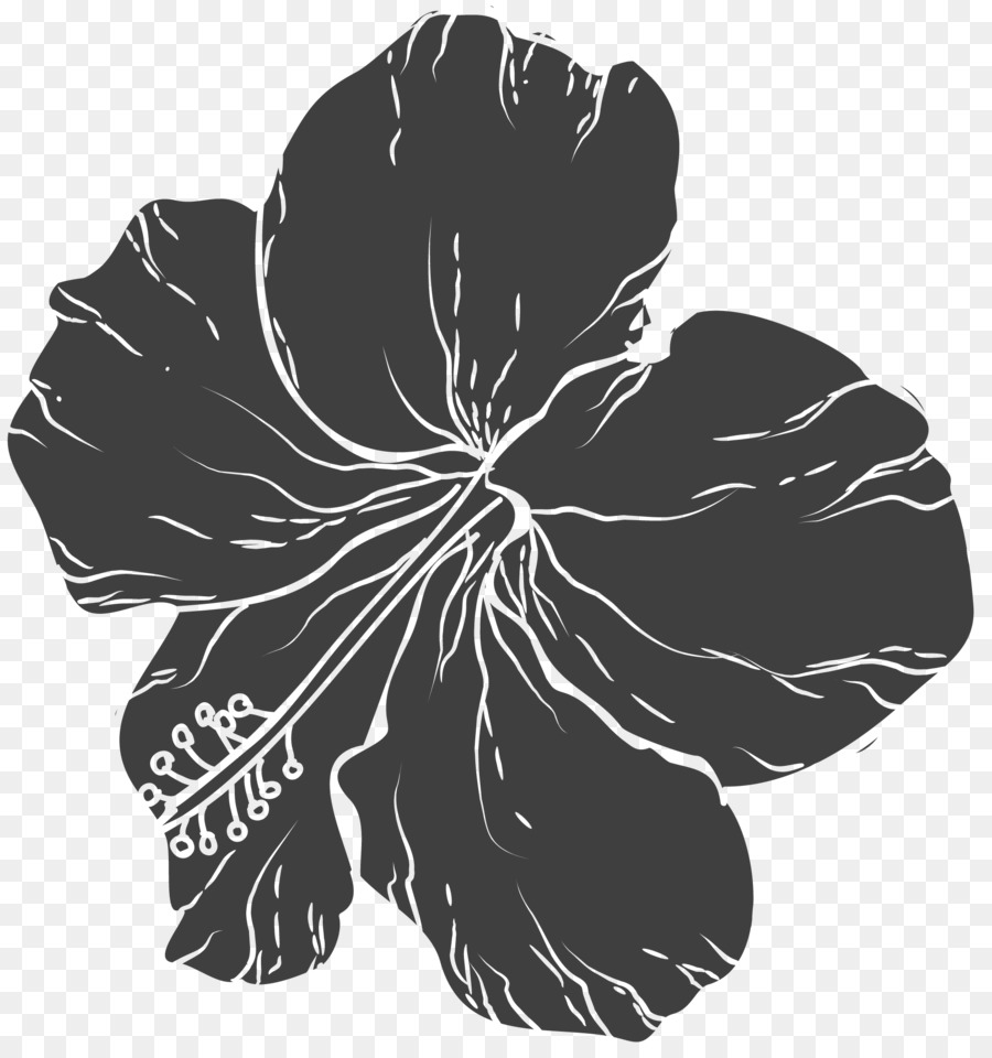 Black And White Flower Hand Painted Floral Design Png Download